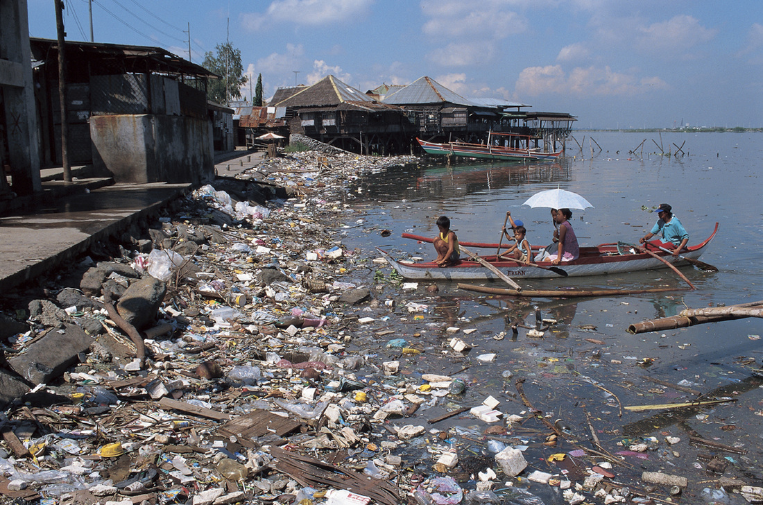 dumping in our waters essay